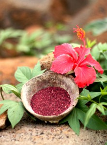 MiaSecret dried hibiscus powder and a flower