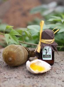 MiaSecrets baobab oil with boabab fruit
